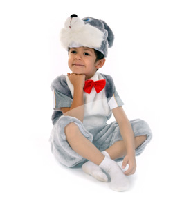 inchirieri costume serbare iepuras Costum serbare IEPURAS