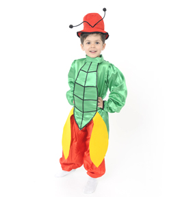 Costum serbare GREIERE Costum serbare GREIERE (colorat)