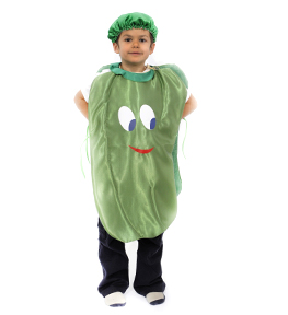 AND5063 Costum serbare ARDEI GRAS
