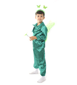 fluture verde Costum serbare FLUTURE VERDE BAIAT