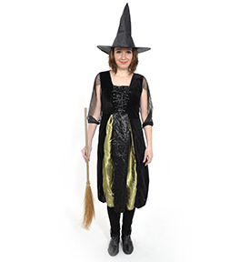 DSC0437 Costum Vrajitoare 3