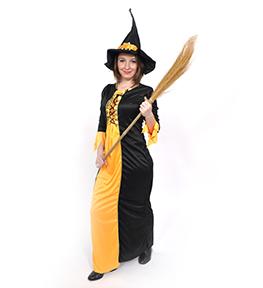 DSC0450 Costum Vrajitoare 4